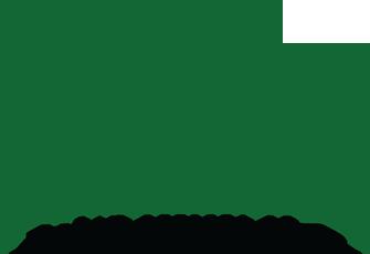 Nader A. Nader